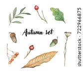 Beautiful Autumn Forest Set...