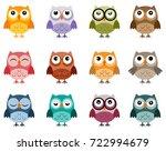 set of owls in  soft vintage... | Shutterstock .eps vector #722994679