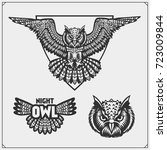 the emblems with owl with open... | Shutterstock .eps vector #723009844