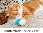Stock photo red cat is playing with his toy mouse 723019549