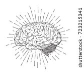 hand drawn human brain with...   Shutterstock .eps vector #723215341