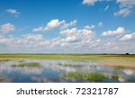 Marsh With Cultivated Land In...