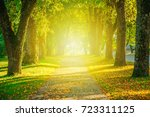 autumn tree alley in city park  ... | Shutterstock . vector #723311125