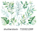 watercolor greens collection... | Shutterstock . vector #723321289