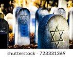 jewish cemetery in vienna | Shutterstock . vector #723331369
