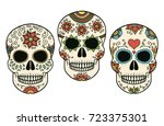 hand drawn vector day of the... | Shutterstock .eps vector #723375301