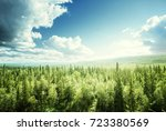 forest in sunny day | Shutterstock . vector #723380569