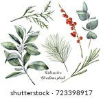 watercolor christmas plant and... | Shutterstock . vector #723398917