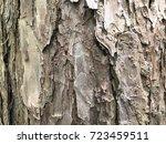tree bark texture wallpaper | Shutterstock . vector #723459511