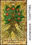 mandragora. ace of pentacles.... | Shutterstock . vector #723477481