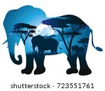 colorful night scene  african... | Shutterstock .eps vector #723551761