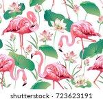 flamingo bird and tropical... | Shutterstock .eps vector #723623191