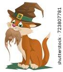funny ginger cat in a halloween ...   Shutterstock .eps vector #723807781