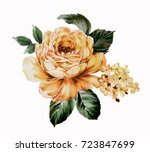 blooming flowers  the leaves... | Shutterstock . vector #723847699