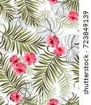seamless hand drawn  exotic... | Shutterstock .eps vector #723849139