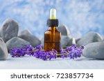bottle of lavender massage oil  ... | Shutterstock . vector #723857734