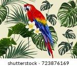 beautiful seamless vector... | Shutterstock .eps vector #723876169