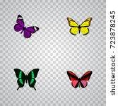realistic archippus  beauty fly ... | Shutterstock .eps vector #723878245