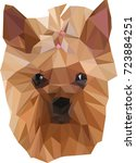yorkshire terrier  dog in low... | Shutterstock .eps vector #723884251