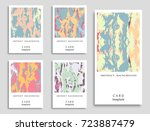 colorful grunge backgrounds... | Shutterstock .eps vector #723887479