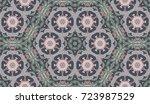 seamless circular vector... | Shutterstock .eps vector #723987529