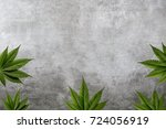 cannabis leaf frame | Shutterstock . vector #724056919