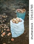 a full sack of potatoes in the... | Shutterstock . vector #724115785