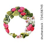 wreath of wild strawberry....   Shutterstock . vector #724158745