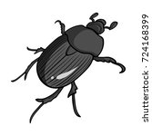 beetle is a coleopterous insect.... | Shutterstock .eps vector #724168399