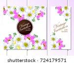 vintage delicate invitation... | Shutterstock .eps vector #724179571