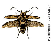 insect stipple drawing isolated ... | Shutterstock . vector #724182679