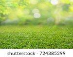 nature spring grass background... | Shutterstock . vector #724385299