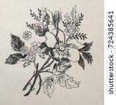 flowers bw | Shutterstock . vector #724385641