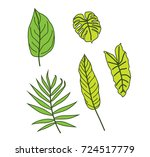 tropical leaves 2 | Shutterstock .eps vector #724517779