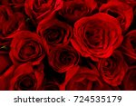 Stock photo bed of red roses 724535179