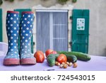 a blue spotty welly boots  on a ... | Shutterstock . vector #724543015