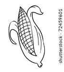 Outline Corn Illustration ...