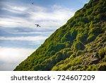 guano  droppings of seabirds ... | Shutterstock . vector #724607209