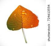 autumn poplar leaf isolated on... | Shutterstock .eps vector #724613554