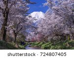 mount fuji and cherry blossoms | Shutterstock . vector #724807405