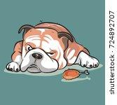 bulldog the dog | Shutterstock .eps vector #724892707
