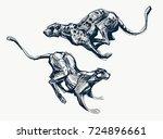 running cheetah fast ink sketch ... | Shutterstock .eps vector #724896661