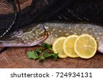 fish pike | Shutterstock . vector #724934131