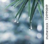 natural fresh background   a... | Shutterstock . vector #724990849