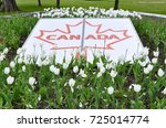 Canada sign in the middle of garden with  with tulips flowers