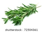 twig of rosemary on a white... | Shutterstock . vector #72504361