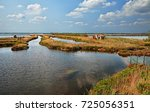 landscape of the po delta park... | Shutterstock . vector #725056351