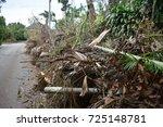 Debris From Hurricane Irma In...