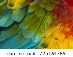 beautiful pattern abstract... | Shutterstock . vector #725164789