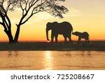 African Elephant Silhouette Sunset Orange - Fine Art prints